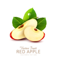 two slices of red apple with green leaf isolated vector image vector image