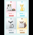 Animal banner with Cats for web design 1 vector image