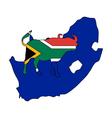 South Africa buffalo vector image