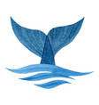 whale tail vector image