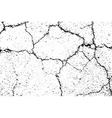 Cracked texture white and black 2 road vector image
