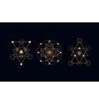 Sacred geometry alchemy symbols vector image
