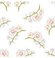 seamless texture branches orchids phalaenopsis vector image