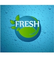 fresh - nature with green leaf on wall glass vector image vector image
