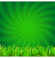 Beams And Green Grass vector image