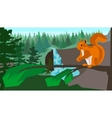 Squirrel on a branch in the coniferous forest vector image