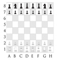 Chess pieces on the desk vector image