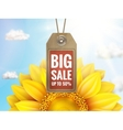 Sunflower with blue sky - autumn sale EPS 10 vector image