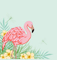 pink flamingo and flowers vector image