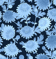 fashion seamless texture with blue chrysanthemum vector image