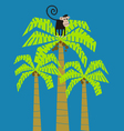 monkey climbed in a palm tree vector image vector image