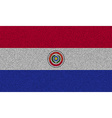 Flags Paraguay on denim texture vector image