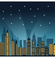 Buildings of night city design vector image