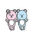 cute animal couple bear together vector image