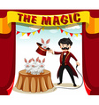 Magic show with magician and rabbits vector image