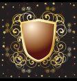 armor shield vector image