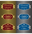 Silver and golden labels vector image