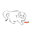 stylized cat vector image
