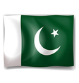 Flag of Pakistan vector image