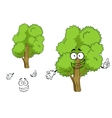 Cartoon deciduous green tree character vector image