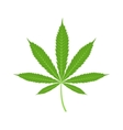 Cannabis marijuana leaf icon vector image