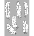 Antique quill pens with white feathers vector image