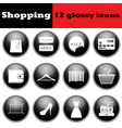 Set of shopping glossy icons vector image