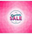 Spring sale tag vector image
