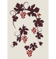 grape vines silhouettes set vector image