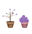Beautiful Purple Trees in Two Flower Pots vector image