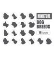 Dog breeds Miniature toy dog set icon Flat style vector image