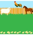 Card design with farm animals vector image