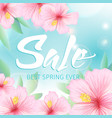 spring sale poster with pink hibiscus background vector image