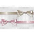 pastel ribbons set vector image