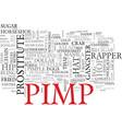 pimp word cloud concept vector image