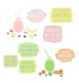 Fruit vegatable smoothies in jar and labels vector image