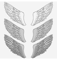 Wings of bird set vector image