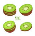 tropical fruit exotic kiwi set flat style vector image