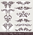 vector set of ornaments vector image