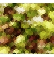 Colorful Seamless Triangle Abstract Background vector image