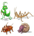 Insect Cartoon Character Pack Five vector image