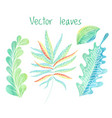 leaves set hand drawn foliage collection vector image