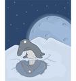 Little penguin vector image