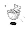 nachos drawing traditional mexican food vector image