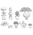 Flowers in garden vector image