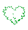 Green Climber Leaves in Beautiful Heart Shape vector image