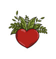 heart symbol with green leaves vector image
