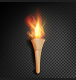 torch with flame burning in the dark transparent vector image