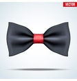Realistic magic bow tie vector image