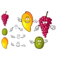 Cartoon mango grape and kiwi fruits vector image